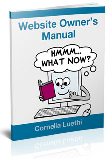At last! Easy-to-read and plain-speaking tips to help you get to grips with your website.