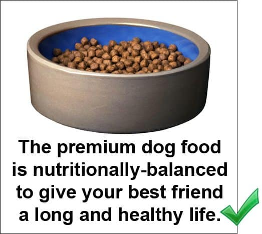 Example of a good photo caption: The premium dog food is nutritionally-balanced to give your best friend a long and healthy life.
