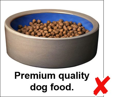 Photo caption example: Premium quality dog food.